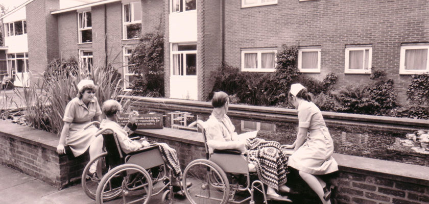 Patients in the garden