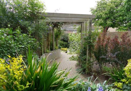 Garden at Caritas