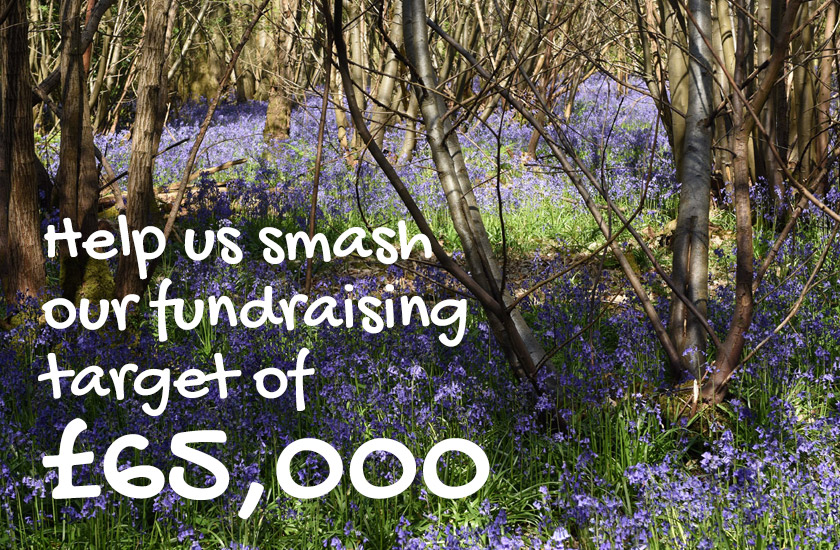 Help us smash our fundraising target of £65,000