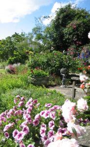 Virtual Open Gardens Dulwich Village one o five JG needs cropping