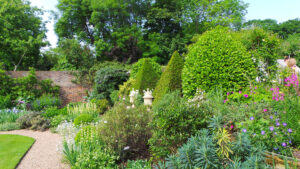 Virtual Open Gardens Dulwich Village one o three JG