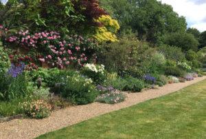 Virtual Open Gardens Dulwich Village one o three JG needs cropping