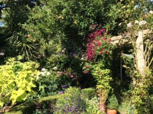 Virtual Open Gardens Goodhart Way Photo